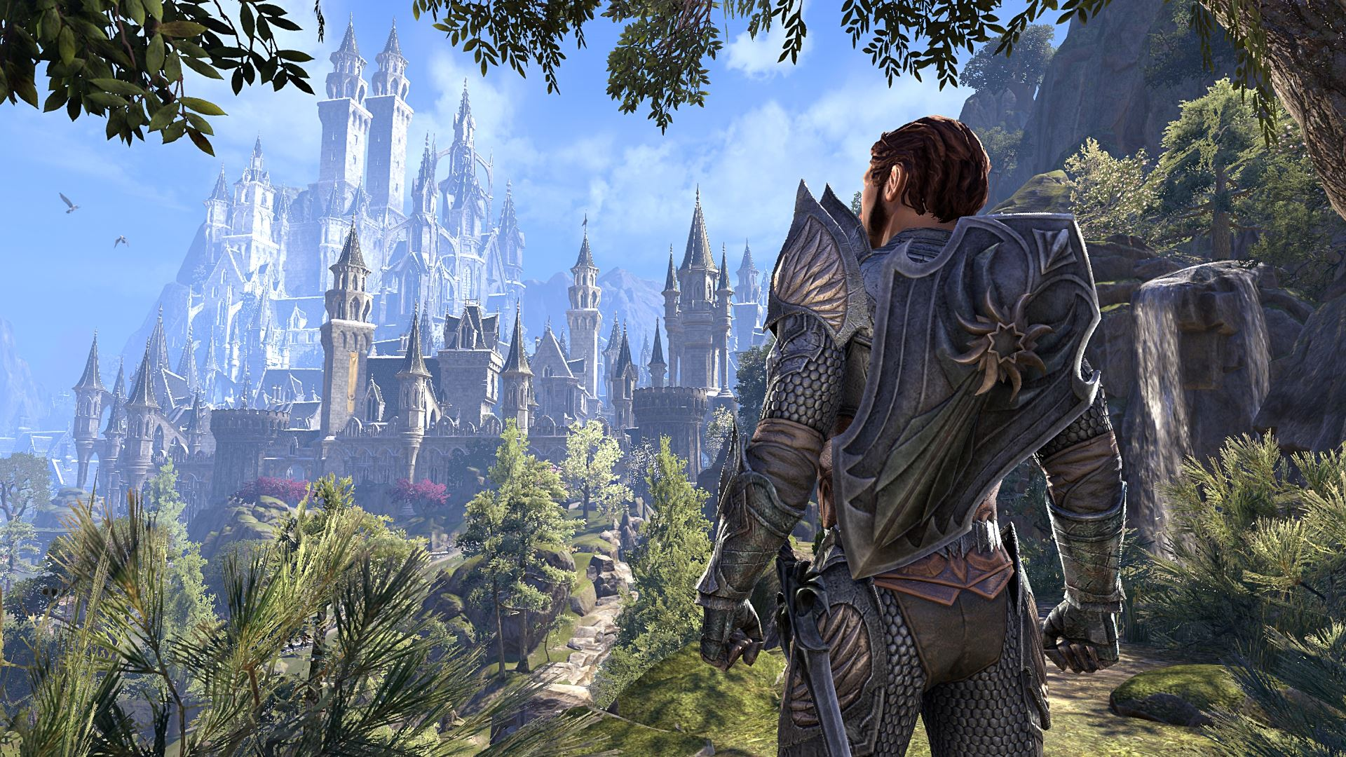 The Elder Scrolls Online Summerset Collector's Edition